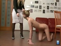 Puppy Training: Being satisfied with their pets, Ladies allow them to copulate for the first time. We will meet regularly, Ladies decided.